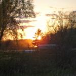Breezy Hill Pics (7)